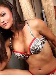 Exotic TS Ming posing her rock hard cock