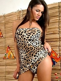 Good looking shemale in leopard print dress posing