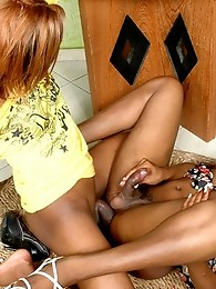 Sexy chocolate shemales multiply their pleasure by two in ass pounding bout
